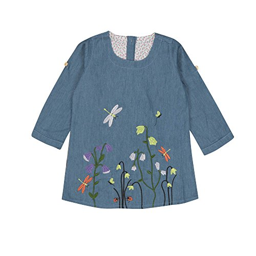 (Creazrise Toddler Kids Baby Girls Clothes Flower Rose Embroidery Denim Thermal Boutique Various Styles Princess Dresses)