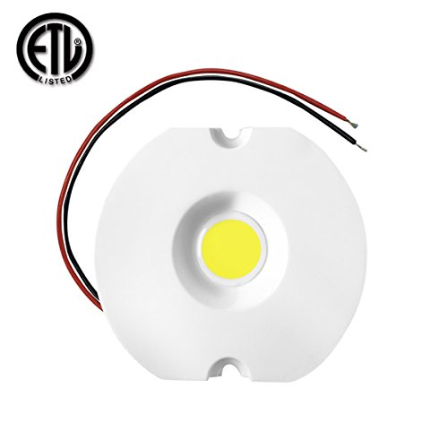 Alight 10W COB LED Chip AC 110V/220V for DIY Blub/Spotlight/Downlight High Power Dimmable Driverless LED module (Warm White 3000K)