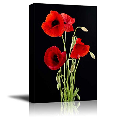 - Canvas Prints Wall Art - Red Poppy Flowers Against Black Background | Modern Wall Decor/Home Decor Stretched Gallery Wraps Giclee Print & Wood Framed. Ready to Hang - 16