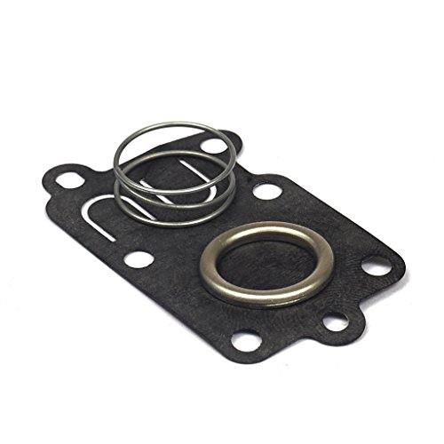 (Briggs & Stratton Diaphragm Kit 5021K)