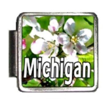 Michigan State Flower Apple Blossom Photo Italian Charm Bracelet Link