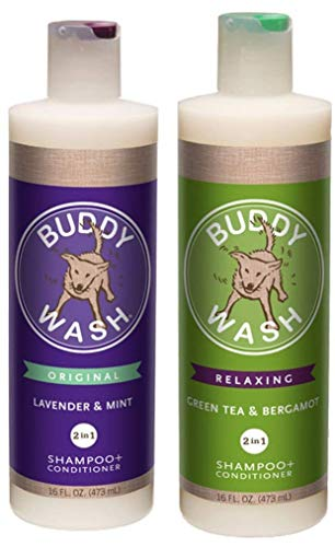 Cloud Star Dog Shampoo Conditioner-Buddy Wash 2 Pack 1 Lavender & Mint 2-in-1 Dog Shampoo + Conditioner & 1 Green Tea & Bergamot 2-in-1 Each One 16 Oz (Best Buddy Dog Wash)