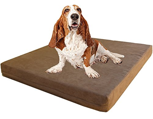 Dogbed4less XL Orthopedic Dog Bed with Gel Infused Memory Foam and Waterproof Liner, Microsuede Brown Cover, 47X29X4 Inch Fit 48X30 ()