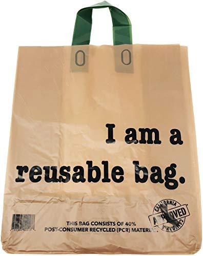Reli. Reusable Kraft Bags w/Green Loop Handle (250 Count) (12
