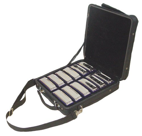 Johnson BK-520-SET Blues King Harmonica Set