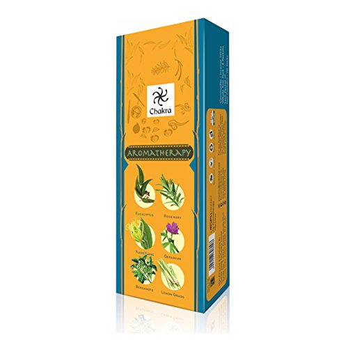 Chakra Aromatherapy Natural Fragrance Scented Sticks - Promotes Health And Well Being- 20 Incense Sticks Per Box - Long Lasting 120 Fragrance Sticks - Pack Of 6 - incensecentral.us