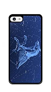 Hard Case Back Custom PC iphone 5c case for girls - purple sky with constellation