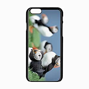 iPhone 6 Black Hardshell Case 4.7inch birds puffins grass sky Desin Images Protector Back Cover