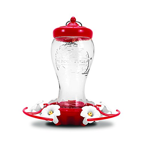Pennington 28 oz Decorative Glass Hummingbird Feeder