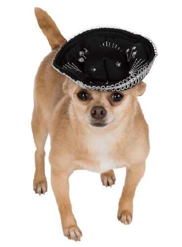 Rubie's Pet Sombrero, Small to Medium, Black and Silver]()