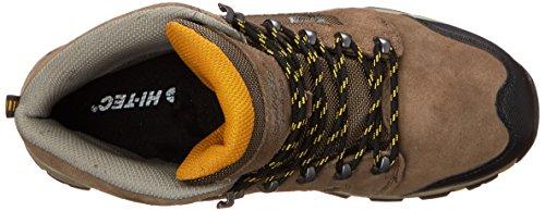 Smokey Brown Men's I Borah Gold Tec WP Peak Boot Core Hiking Hi Taupe zBq85x