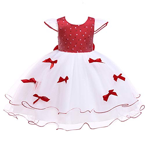 LZH Baby Girl Dress Formal Christening Baptism Gowns Pageant Dress -