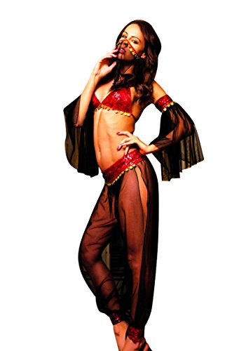 [Elawin Women Black Gauzy Belly Dancer Fantasy Costume Sexy Lingerie (Large)] (Sexy Belly Dancer Costumes)
