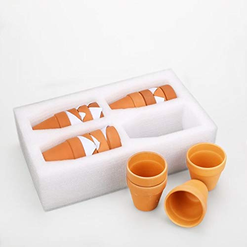 Set of 16 Terracotta Clay Pots - Great for Succulent & Cactus Nursery  Planter, DIY Craft Projects, Wedding and Party Favors (3inchx 3inch)