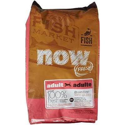 Petcurean Now Fresh Grain Free Fish Adult Recipe Dog Food - 6lb