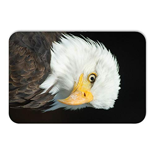 Kitchen Floor Toilet Bath Mat Rug,bxx Bald Eagle Bird of Prey Raptor Animal Theme,Soft Super Absorbent Flannel Luxury Bathroom Decor Mat with Non Slip Backing,24W×36L Inches (Pick Up Lines To Use On Cops)