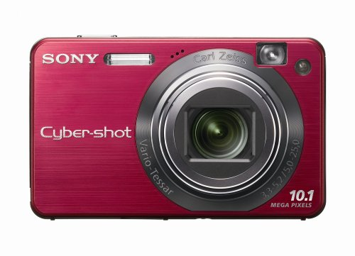 (Sony Cybershot DSCW170/R 10.1MP Digital Camera with 5x Optical Zoom with Super Steady Shot (Red))