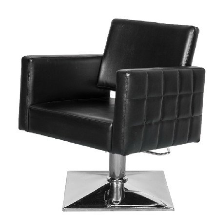 Eastmagic Brand New Barber Chair Styling Hair Beauty Salon Spa Equipment (Black)