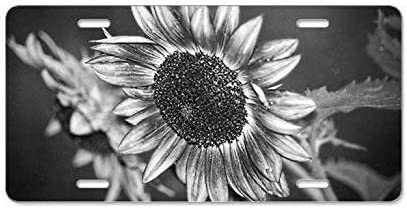 Front License Plate Vanity Tag Aluminum License Plate 6 x 12 Tin Signs Bensun Nancy Black and White Sunflower