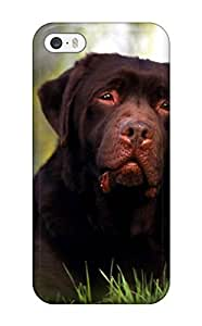 Durable Defender Case For Iphone 5/5s Tpu Cover(rottweiler Dog )