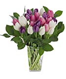 Stargazer Barn - Big Flirt Bouquet - 2 Dozen Assorted Tulips With Clear Vase - Farm Fresh