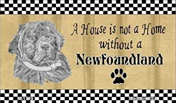 Newfoundland Magnet House Is Not A Home