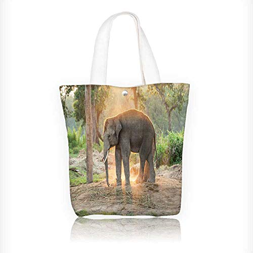 canvas tote bag Elephant farm near Chitwan nation park in Nepal reusable canvas bag bulk for grocery,shopping W11xH11xD3 INCH