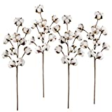 4 Pack Artificial Cotton Stems - Lvydec 21'' Rustic Style Fake Cotton Floral Stem with Total 40 Cotton Bolls for Home Farmhouse Wedding Decor