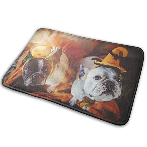 ABOUtshoc Soft Door Mats- Couple of Dogs with Halloween Costume Doormats Anti-Slip House Garden Gate Carpet Door Mat Floor Pads 15.7