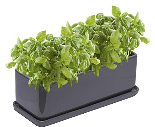KOZitas 11.5 inch Minimalist Rectangle Planter, Grey Ceramic Succulent Planter Pots/Mini Flower Indoor Planter Terrarium with Draining Saucer. Window Box Apt for Cactus, Herbs, Plants and Flowers