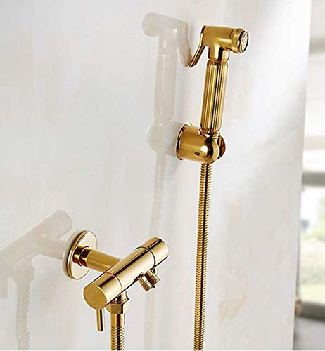 Hygienic Squeegee - QLBUJ Ass Bidet Squeegee Silver Bathroom Faucet Shower System Washing Tap Tail Anal Nozzle Wall Handheld Hygienic,Gold
