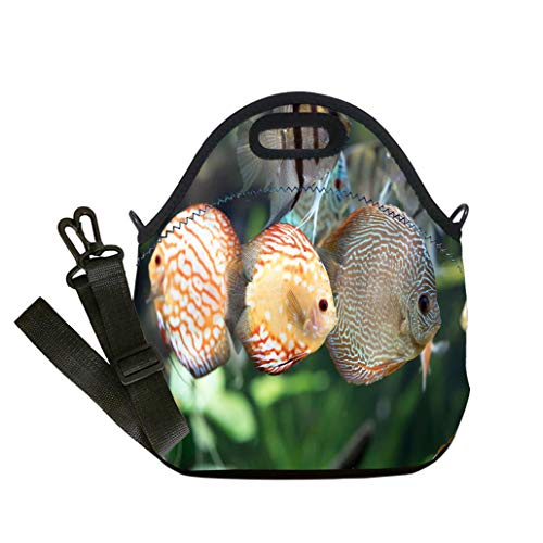 3D Print Neoprene Reusable Cooler Fashion Lunch Bag Pigeon Blood Discus fish Symphysodon aequifasciatus Multicolor,for Adults and children waterproof Lunch Box