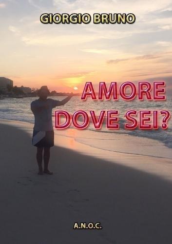 AMORE DOVE SEI? (Italian Edition)