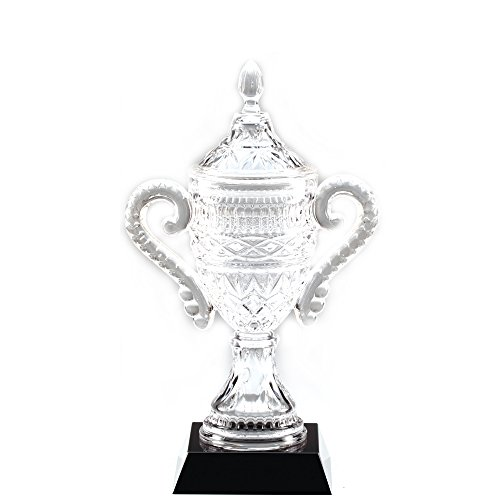 Awards and Gifts R Us Customizable 13 Inch Lead Crystal Trophy Cup on Black Base, includes Personalization