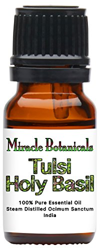 Miracle Botanicals Tulsi Holy Basil Essential Oil - 100% Pure Ocimum Sanctum - Therapeutic Grade - 10ml