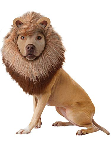 California Costumes Lion Dog Costumes, Pet, Brown, Medium
