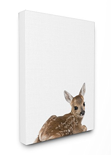 Stupell Home Décor Baby Fawn Studio Photo Stretched Canvas Wall Art, 16 x 1.5 x 20, Proudly Made in (Fawn Canvas)