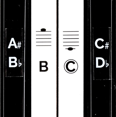 Deluxe Piano Keyboard Note Stickers for 49 / 61 / 76 / 88 Ke