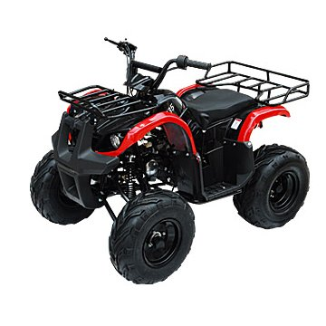 New Atv 125cc Mid Size Automatic with Reverse Ata-135d Model