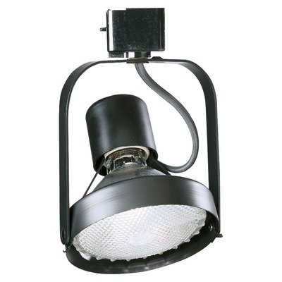 Budget PAR 38 Ring Track Light Finish: White ()