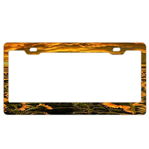 YEX Abstract Beautiful Sunrise Sunset Moonlight License Plate Frame Car Tag Frame Auto License Plate Holder 12