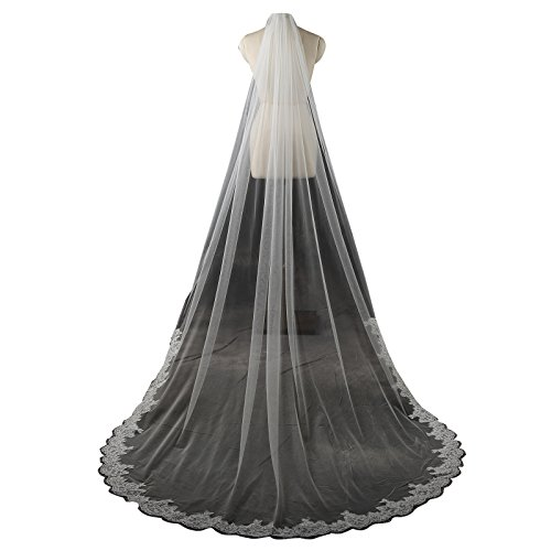 Larovias One Layer Lace Cathedral Wedding Veil with Metal Comb LRV003 White (Lace Alencon Veils)