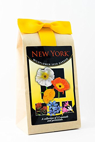 New York Wildflowers - Seed Mix - a beautiful collection of twelve annuals and perennials - enjoy the natural beauty of New York flowers in your own home garden
