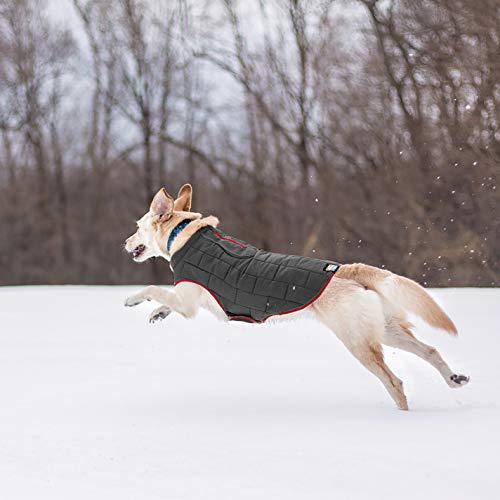 Image of Kurgo Loft Jacket, Reversible Dog Coat, Dog Coat for Cold Weather, Water-Resistant Dog Jacket with Reflective Trim, Red/Grey, X-Large