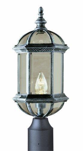 Trans Globe Lighting 4186 RT Outdoor Wentworth 19.75
