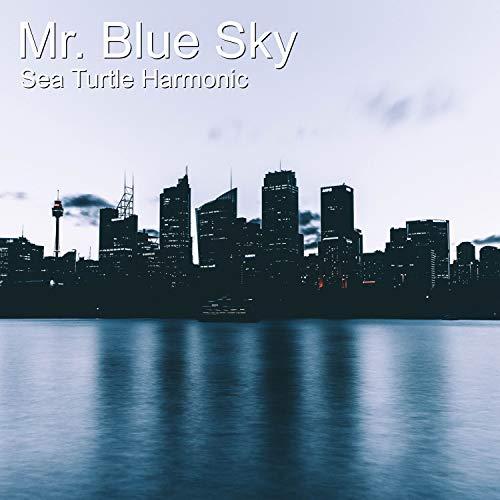 Mr. Blue Sky -