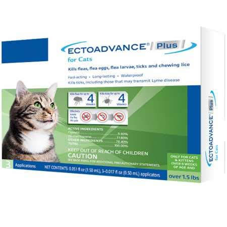 Amazon.com: ectoadvance Plus para gatos (3 dosis): Mascotas
