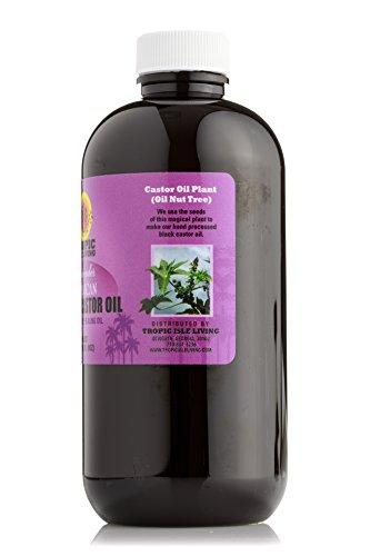 Buy tropic isle jamaican black castor oil glass bottle BEST VALUE, Top Picks Updated + BONUS