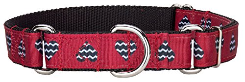 Country Brook Design Queen of Hearts Ribbon Martingale Dog Collar - Medium