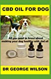 CBD OIL FOR DOG: All you need to know about